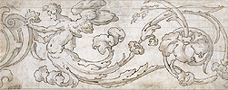 Florentine School , Floral Ornament