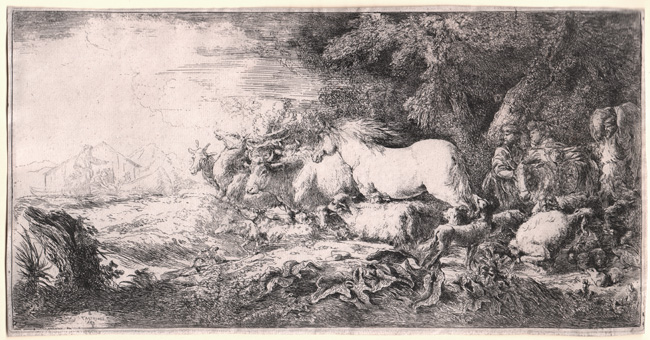 Castiglione, Noah and the Animals